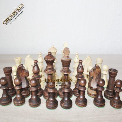 Шахматы Стаунтон 5 Астана