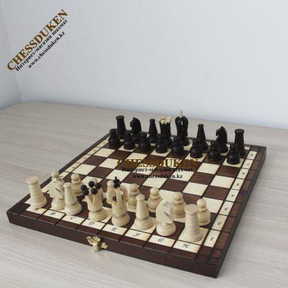 Шахматы Новый год Шымкент