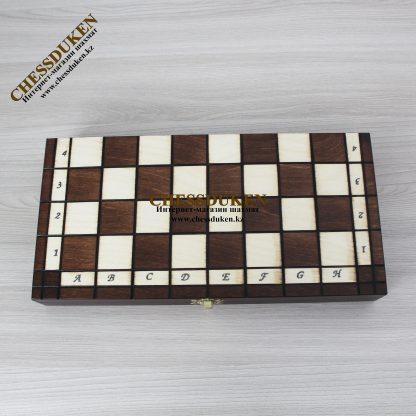 Шахматы Новый год Караганда