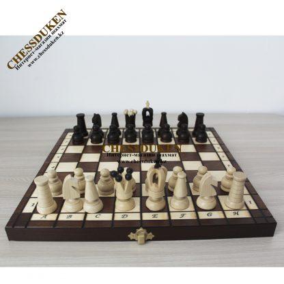 Шахматы Новый год Алматы