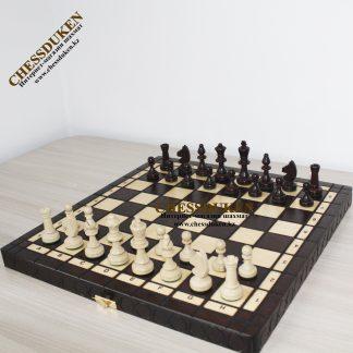 Шахматы новый год Астана